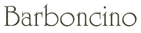 バルボンチーノ【Barboncino】ヘアーアイロンなどのビューティー機器販売